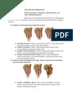 Klasifikasi Trauma Pada Gigi