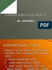 Cairan Dan Elektrolit