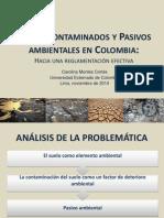 04 Carolina Montes Suelos Contaminados Pasivos Ambientales