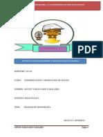 Monografía de Puentes.doc