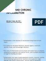 Acute & Chronic Inflammation
