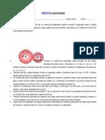 Ejercicios-21-9-15-PARA DESARROLLAR.docx