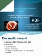 Imágenes Placenta