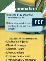 Inflammatry Process