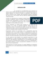 Maicena - Física II