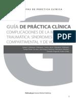 Guía de práctica clínica de las Complicaciones de la mano traumática