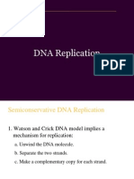 DNA replication.ppt