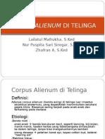 Corpus Alienum Di Telinga