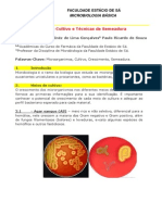 RELATORIO 1 - microbiologia