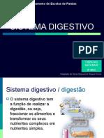 sistemadigestivo-131213101416-phpapp01