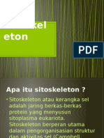 Sitoskeleton ppt