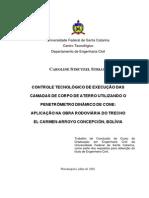 Dissertações - 2008 - Striani (DCP)