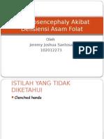 Haloprosencephaly Akibat Defisiensi Asam Folat