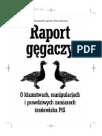 Raport gegaczy