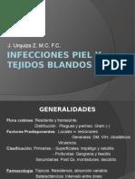 1. Piel Tejidos y Diarrea Ia