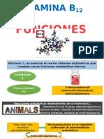 Funciones de Vitamina b12_bioquimica