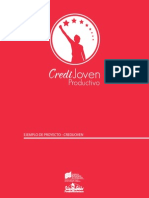 Ejemplo Proyecto Credijoven (1)