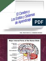 El Cerebro y Sus Estilos