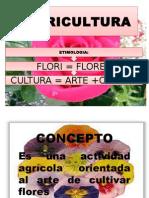 Flori Cultura
