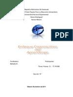 71981285-Enfoque-Cognoscitivo-Del-Aprendizaje.doc