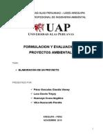 Formulacion y Evaluacion de Proyectos - Alto Selva Alegre Pip