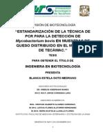 Estandarización de la técnica de PCR