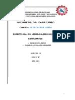 Informe Final de Petrologia