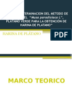 Expo Harina de Platano
