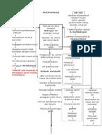 Patofisiologi Diabetes Melitus tipe 1 dan 2