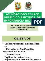 AMINOÁCIDOS.ppsx