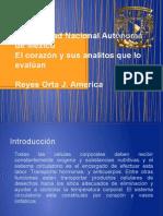 Presentacion Corazon