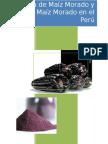 UPC-658.848-CHIC-2008-30-taf_maiz-o (1)