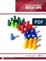 Nucleo 1 APO