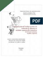 Organización Del Trabajo Entorno a La Producción de Alimentos en Sociedades Agropastoriles Del Formativo