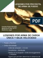 HPAF (1).pdf