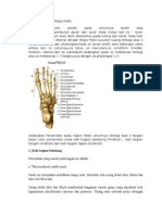 119443865 Anatomi Regio Pedis Nyeri Sendi
