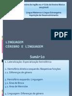 Linguagem_Cérebro.pdf