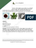 grannytherapy2014-09-10 04-45-33