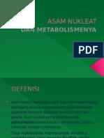 Asam Nukleat Dan Metabolismenya