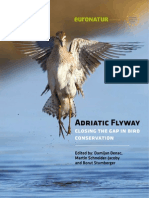 Adriatic Flyway 2009