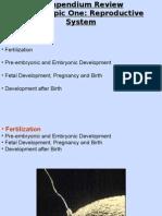 U4 - Compendium Review Reproduction Part 3