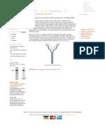 DenaturingDenaturing Polyacrylamide Gel Electrophoresis of DNA & RNA  Polyacrylamide Gel Electrophoresis of DNA & RNA _ National Diagnostics