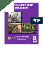 buku teknologi lahan gambut.pdf