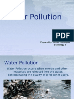 waterpollutionppt-130801101848-phpapp02
