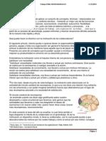 Dirigir Personas Neuroliderazgo