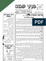 Peninei Shmuel Pikoudei 5770