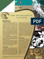 Biological Soil Crusts