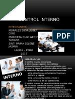 Control Interno en El Sector Publico y Privado (1)