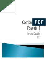CombustíveisFosseis_1516_1.pdf
