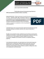 Preprograma PACAP 2010